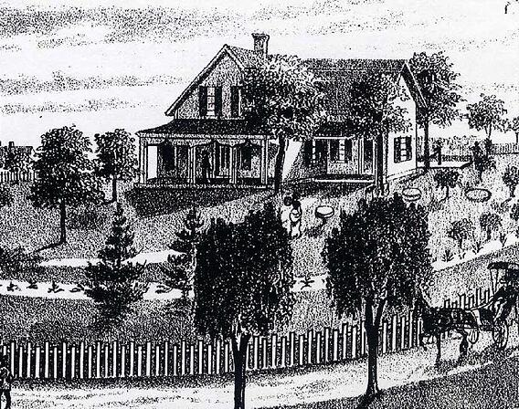 Phelps-Austin House